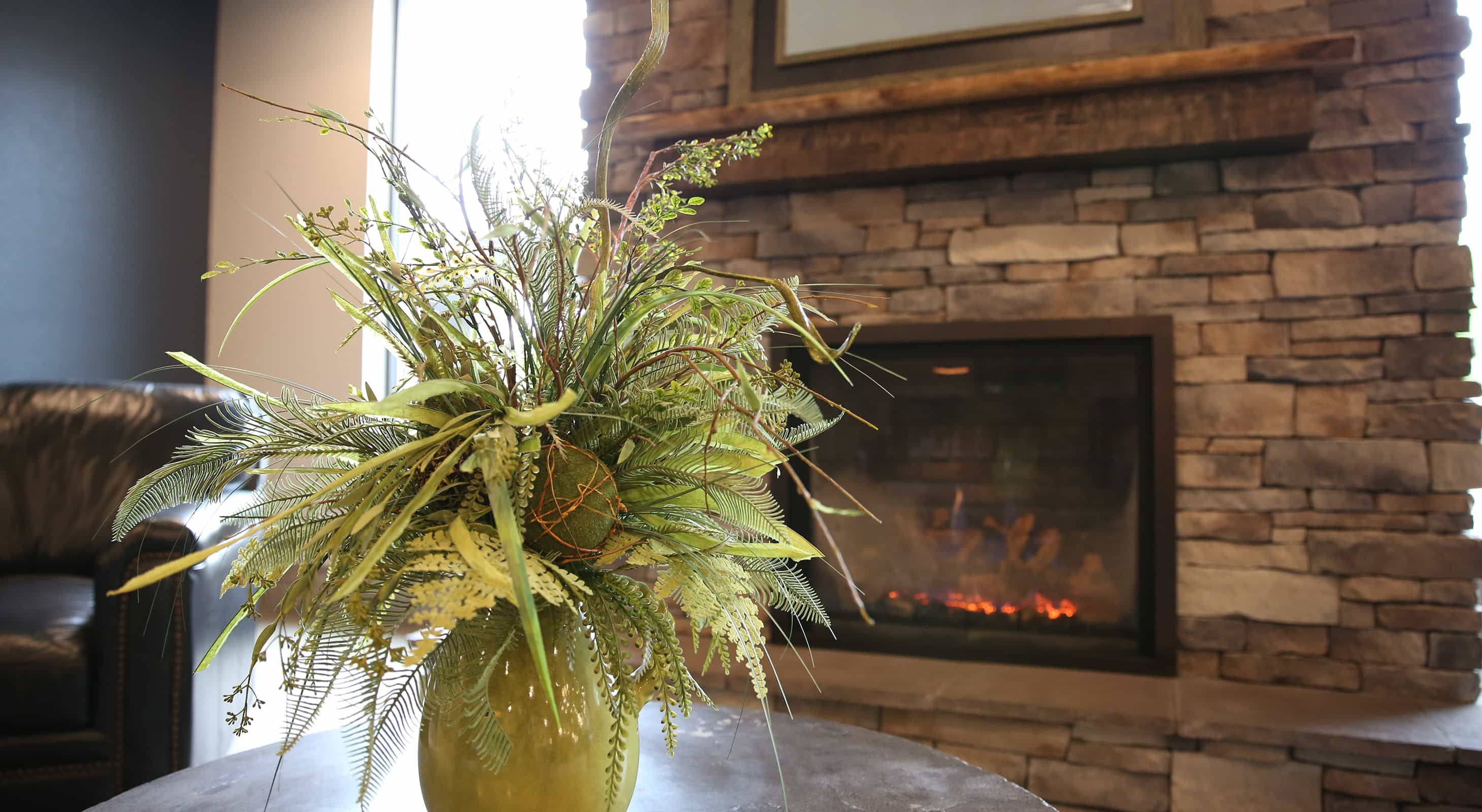 Common area fireplace and potted plant