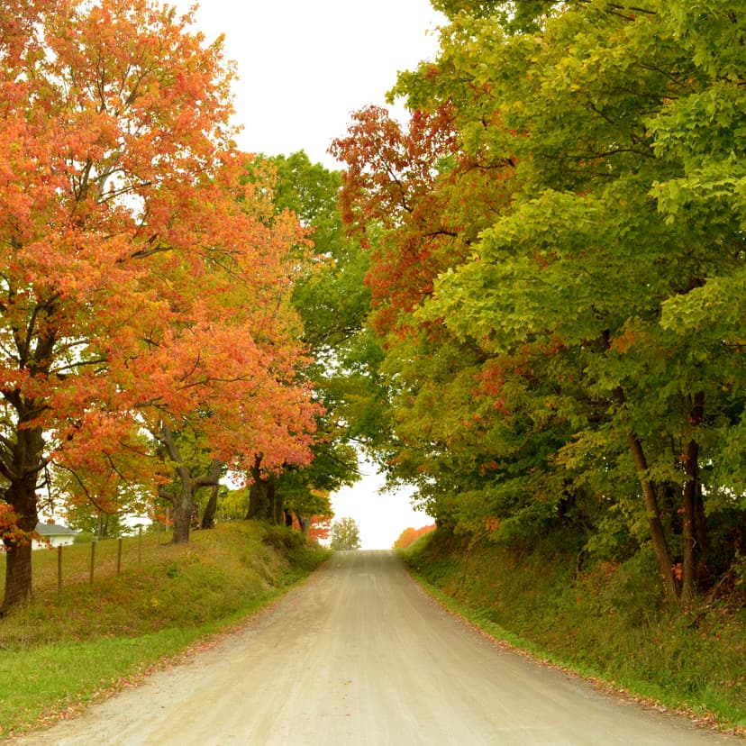 country road in the fall in Ohio
